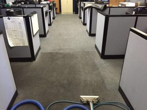 Omni Cleaning specializes in commercial carpet cleaning, particularly high-rise carpet cleaning. We use a wide variety of cleaning methods, chemicals, and equipment to facilitate and expedite the cleaning process for your commercial building whether it be a warehouse, single-story, industrial, or in a high rise.